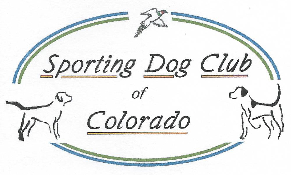 sporting dog club