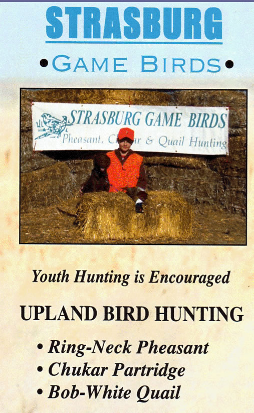 strasburg game birds